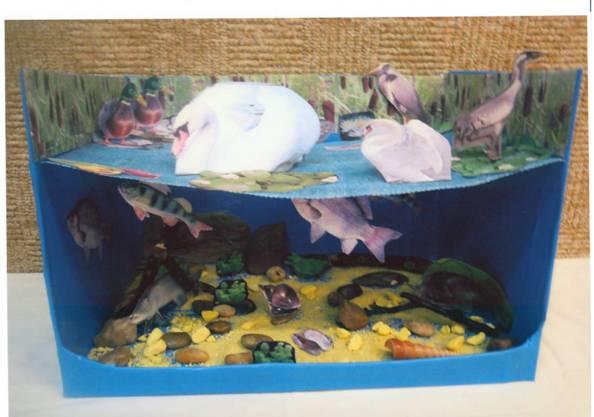 Макеты по экологии в детском саду своими руками 5