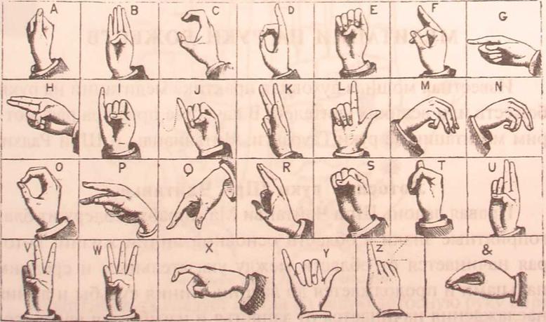 Язык жестов женщины Жесты соблазнения  Практическая